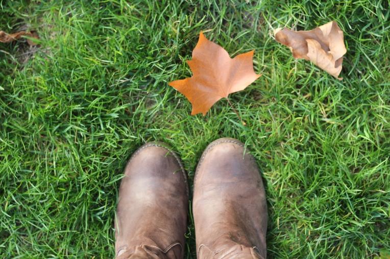 Autumn Begins in Hyde Park 017