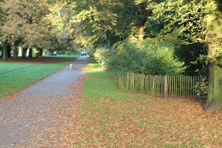 Autumn Begins in Hyde Park 047
