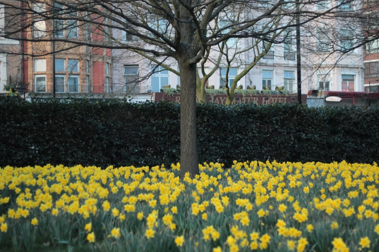 Spring begins in London 036